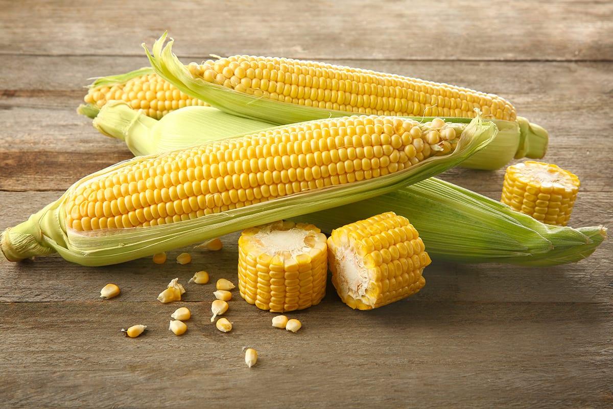 Corn Nutrition