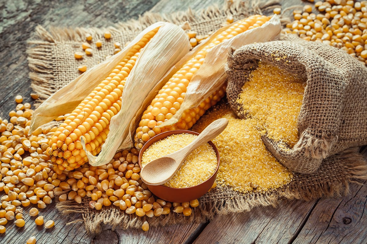 Corn is a Grain and a Vegetable