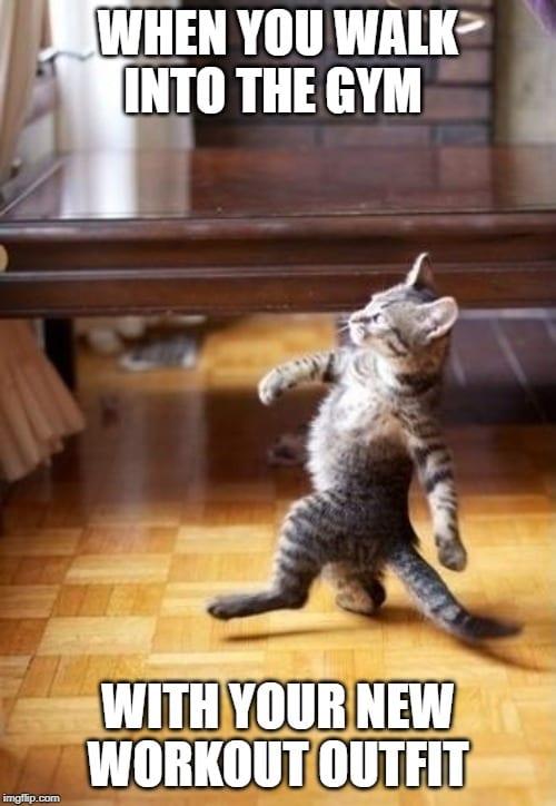 Cat Strutting Workout Clothes Meme