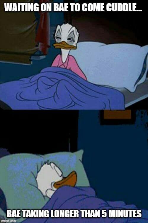 Donald Duck Cuddle Meme
