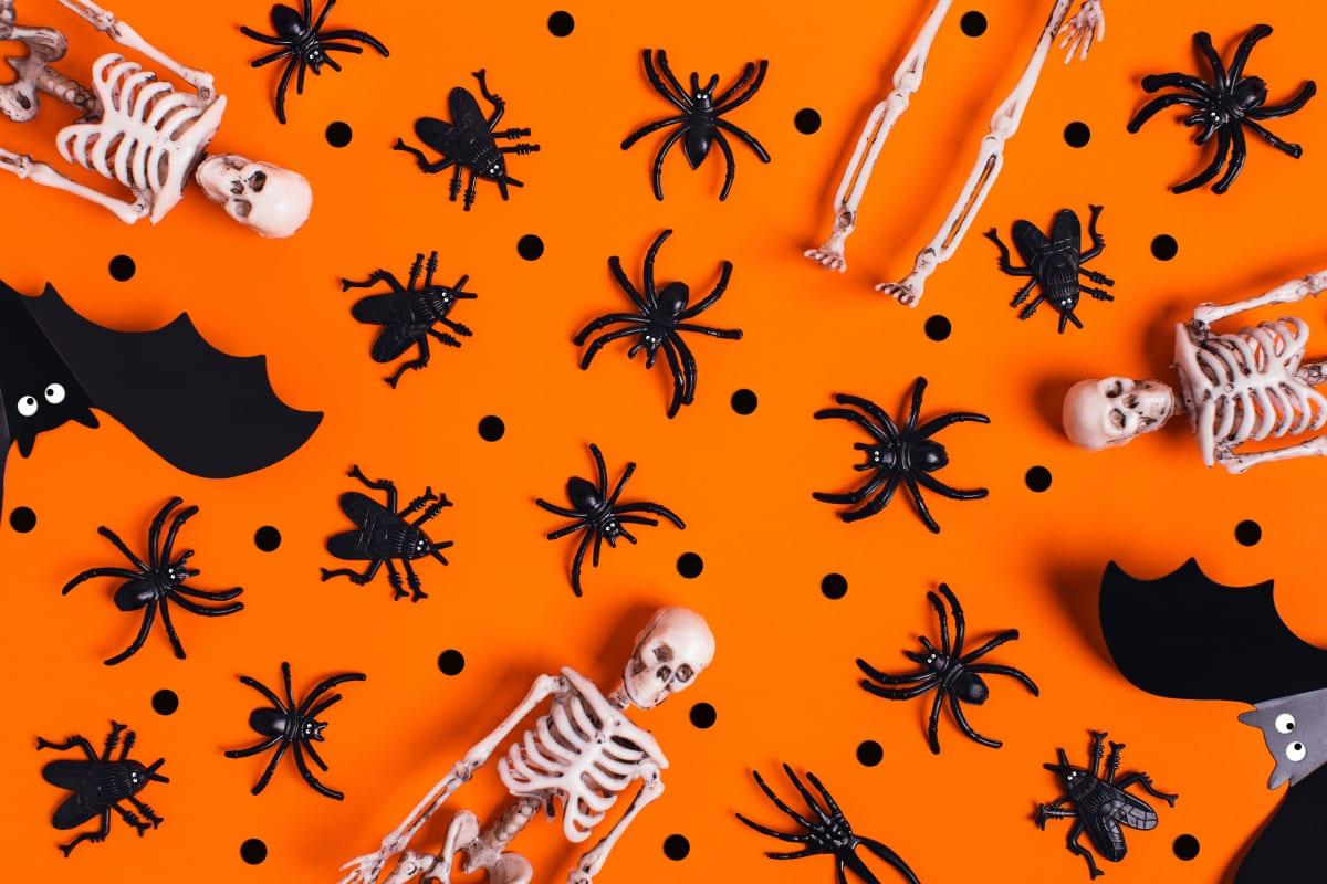 Spooky Halloween Material