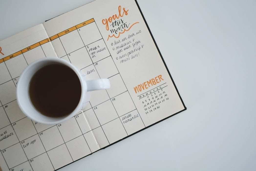 Goals and Schedule for the Year