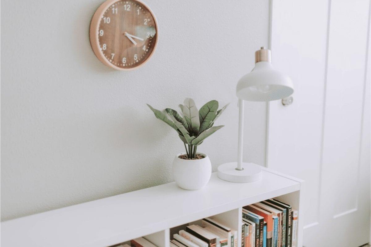 Indoor Plants in Bedroom